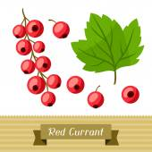 Set of various stylized red currants. — Stock Vector