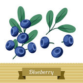 Set of various stylized blueberries. — Stock Vector