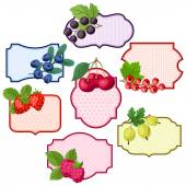 Set of various badges, labels with berries. — Stock Vector