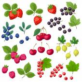 Set of various stylized fresh berries. — Stock Vector