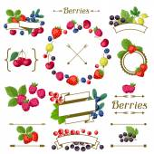 Set of various ribbons, labels with berries. — Stock Vector