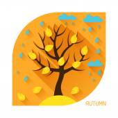 Seasonal illustration with autumn tree in flat style. — Stock Vector