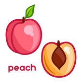Stylized illustration of fresh peach on white background — Stock Vector