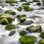 Mountain river waterfall — Stock Photo #54177023