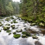 Mountain river waterfall — Stock Photo #54177025