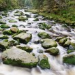 Mountain river waterfall — Stock Photo #54177029