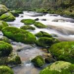 Mountain river waterfall — Stock Photo #54177035