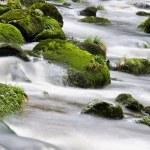 Mountain river waterfall — Stock Photo #54177057