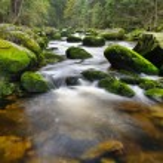 Mountain river waterfall — Stock Photo #54177061