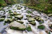 Mountain river waterfall — Стоковое фото