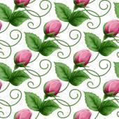 Modèle sans couture avec roses — Vecteur