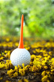 Golfball with yellow flower — Stock Photo