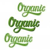 Organic typography illustration — Stock Vector