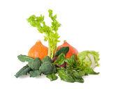 Zelenině — Stock fotografie