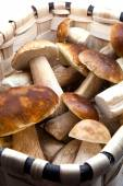 Basket with eatable mushrooms — Stock Photo