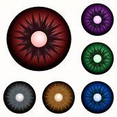 Set of colorful eyes — Stock Photo