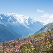 Mont Blanc — Stock Photo #53371299