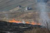 Fogo de grama — Fotografia Stock