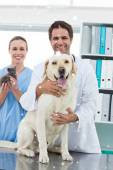 Veterinarians with dog and kitten — Stock Photo
