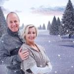Mature winter couple — Stock Photo #53901605
