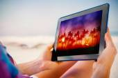 Tablet showing palm tree background — Photo