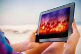 Tablet showing palm tree background — Stockfoto