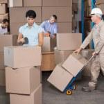 Warehouse workers preparing shipment in — Stockfoto #53919643