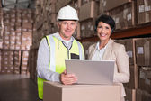 Warehouse worker and manager looking at laptop — Stock Photo