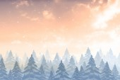 Snow falling on fir tree forest — Stock Photo