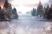 Snowy landscape with fir trees — Stock Photo