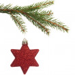Red christmas decoration hanging from branch — Stock Photo #53921363