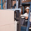 Forklift driver operating machine — Stock Photo #53922653