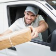 Delivery driver offering parcel — Stock Photo #53924191