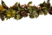 Holly and green christmas branches  — Stock Photo