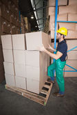 Warehouse worker loading up a pallet — Stok fotoğraf