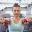 Fit brunette holding red dumbbells — Stock Photo #56907739