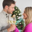 Happy couple enjoying some wine — Stock Photo #56911385