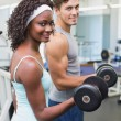 Fit couple lifting dumbbells together — Stock Photo #56911593