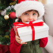 Festive little boy smiling at camera with gift — Stock Photo #57258767