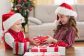 Festive siblings smiling at their gifts — Stock Photo