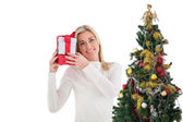 Festive blonde holding gift by the tree — Stock Photo