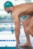 Swimmer about to dive into the pool — Stock Photo
