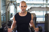 Muscular man exercising with dumbbells in gym — Stock Photo