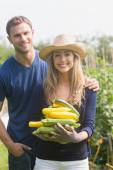 Cute couple gardening on sunny day — Stock Photo