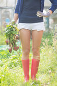 Woman holding home grown vegetables — Fotografia Stock