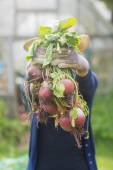 Woman showing home grown vegetables — Stockfoto