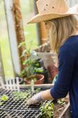 Pretty blonde gardening in greenhouse — Stock Photo