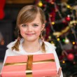Portrait of a smiling little girl holding a wrapped gift — Stock Photo #60837263