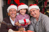 Three generation family celebrating christmas — Stock fotografie