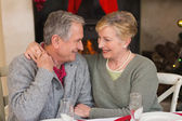 Portrait of a happy senior couple hugging — Stock Photo